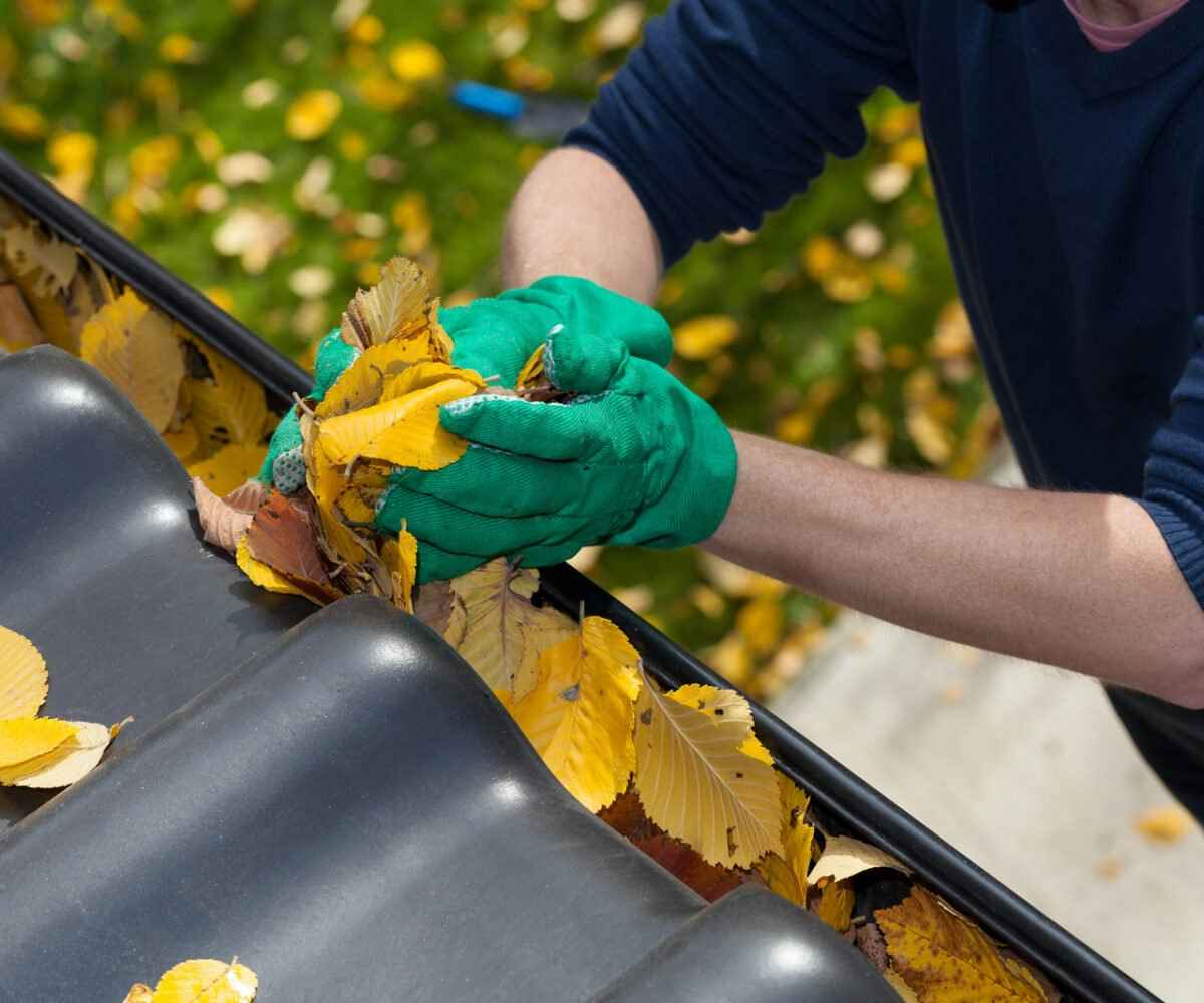 fall cleaning tips